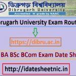 Dibrugarh University BA BSc BCom Time Table 2021