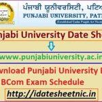 Punjabi University UG PG Time Table 2021