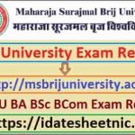 Brij University UG PG Exam Result 2021