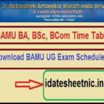 BAMU BA BSc BCom Date Sheet 2021