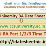 CCS University BA Exam Scheme 2021