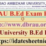 DBRAU B.Ed Exam Result 2020
