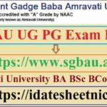 SGBAU UG PG Exam Result 2020
