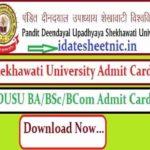 PDUSU BA BSc BCom Admit Card 2021