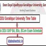 DDU GKP BA BSc BCom Date Sheet 2021
