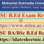 MLSU B.Ed Exam Result 2021