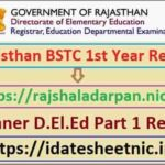 Rajasthan D.El.Ed 1st Year Exam Result 2021