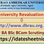Agra University BA BSc BCom Scrutiny Result 2021