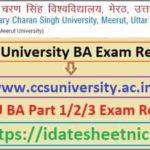 CCSU BA 1st/2nd/3rd Year Result 2021